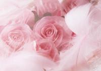 Цветы_1535