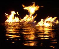 phoenix_flames_firewater_769799_o