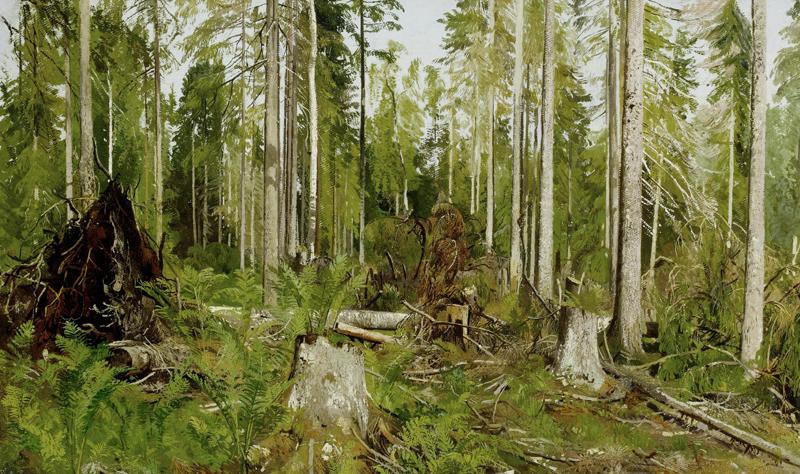 картина Шишкина - 60 x
